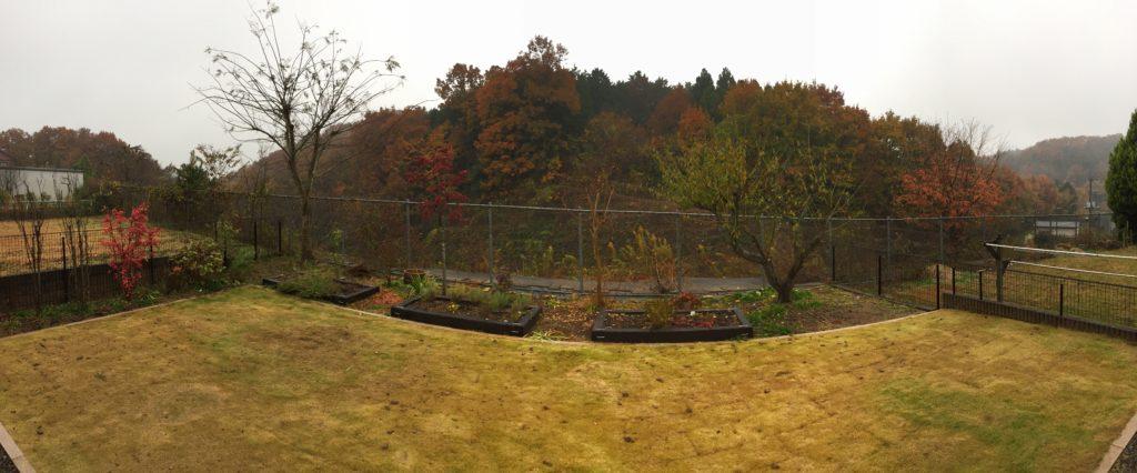 2016年秋の紅葉の中の梅