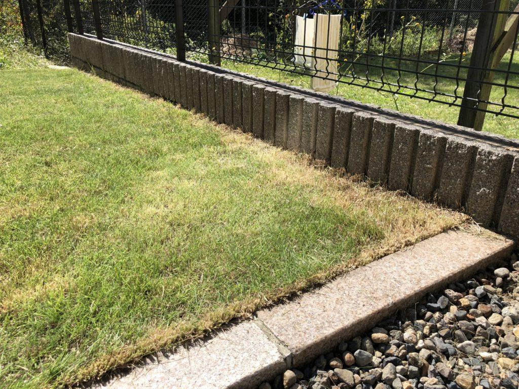 剪定バサミでカットした後のブロック際の芝