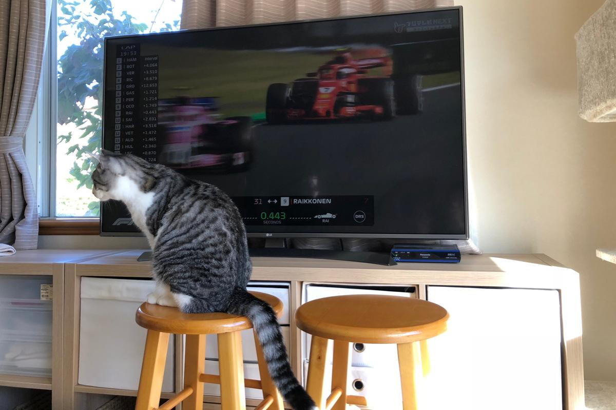 フジテレビNEXTの生中継でF1日本グランプリ2018決勝レースを観戦