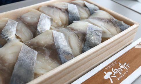 鯵の押し寿司を湘南新宿ラインで食べる