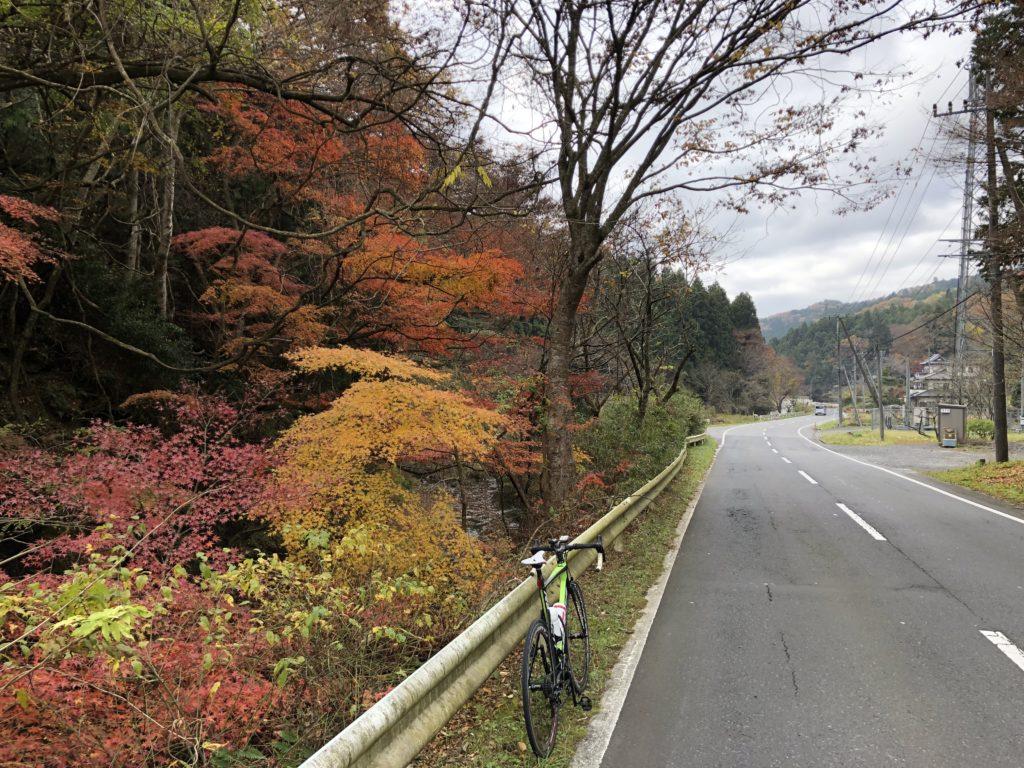 県道29号線大沢の紅葉
